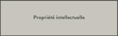 Propriété-intellectuelle